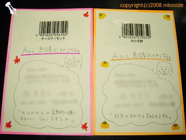 20081107nichijyo