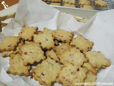 20090729cookie1